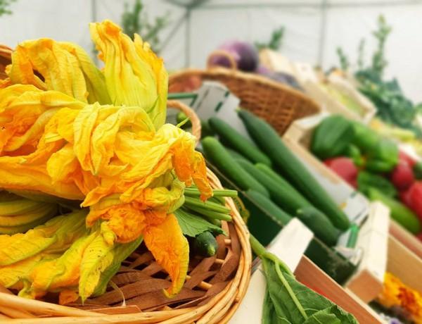 gastro-fleurs