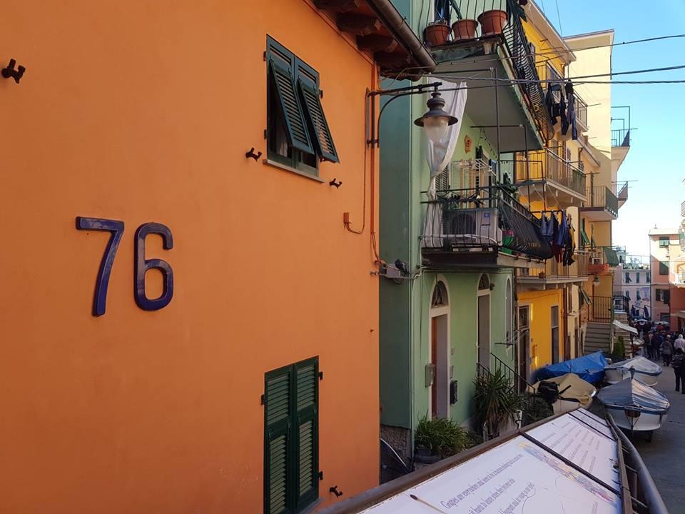 rue-manorola