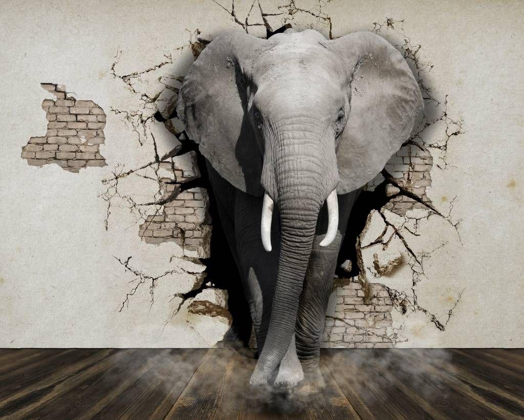 3d-olifant-uit-de-muur-op-fotobehang_9
