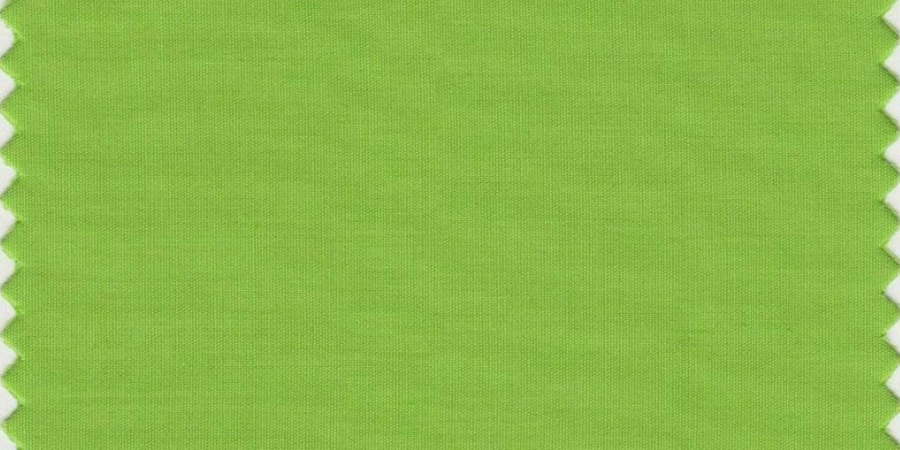 Le-vert-Greenery-a-ete-designe-couleur-de-l-annee-2017