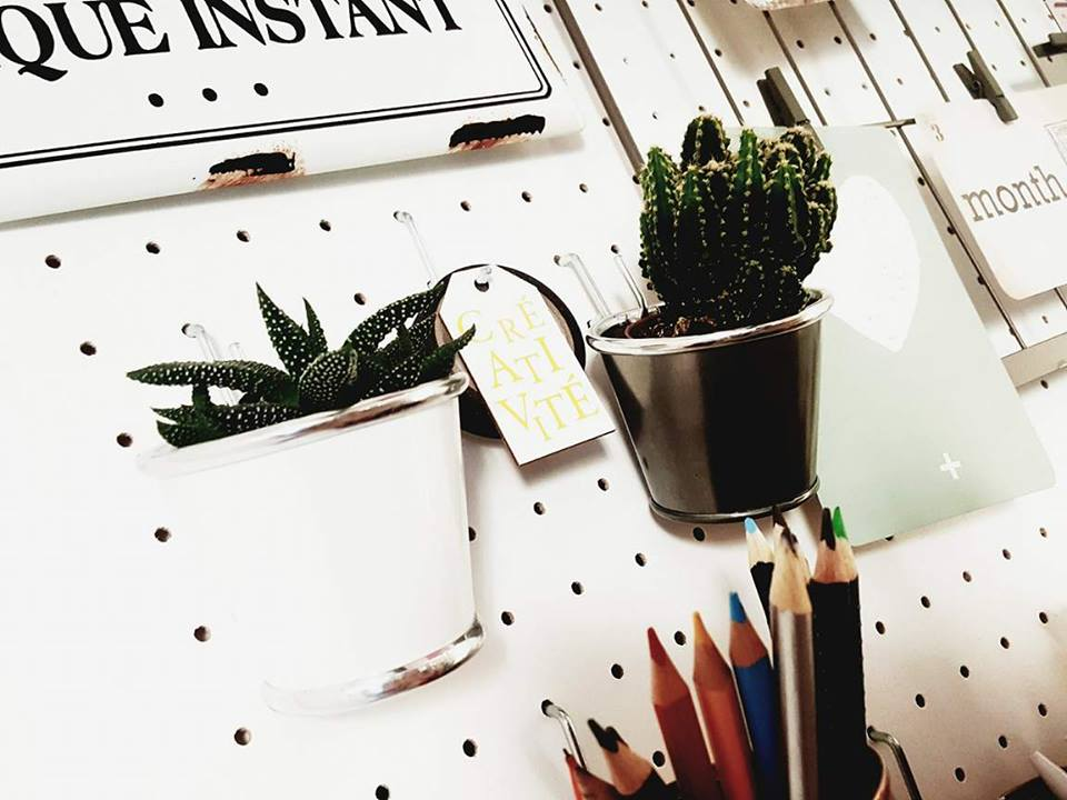 cactus_pegboard