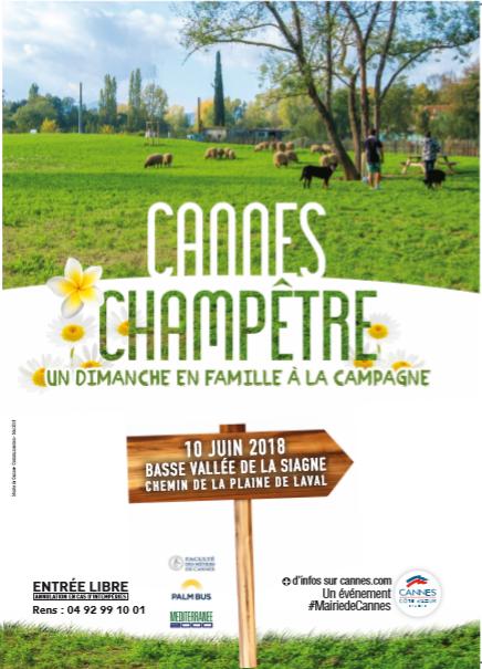 cannes-champêtre-Juin