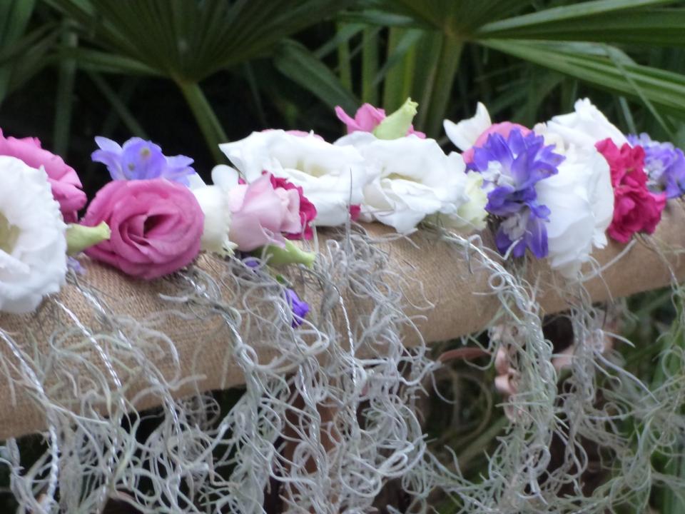 fleurs_chambre_noire