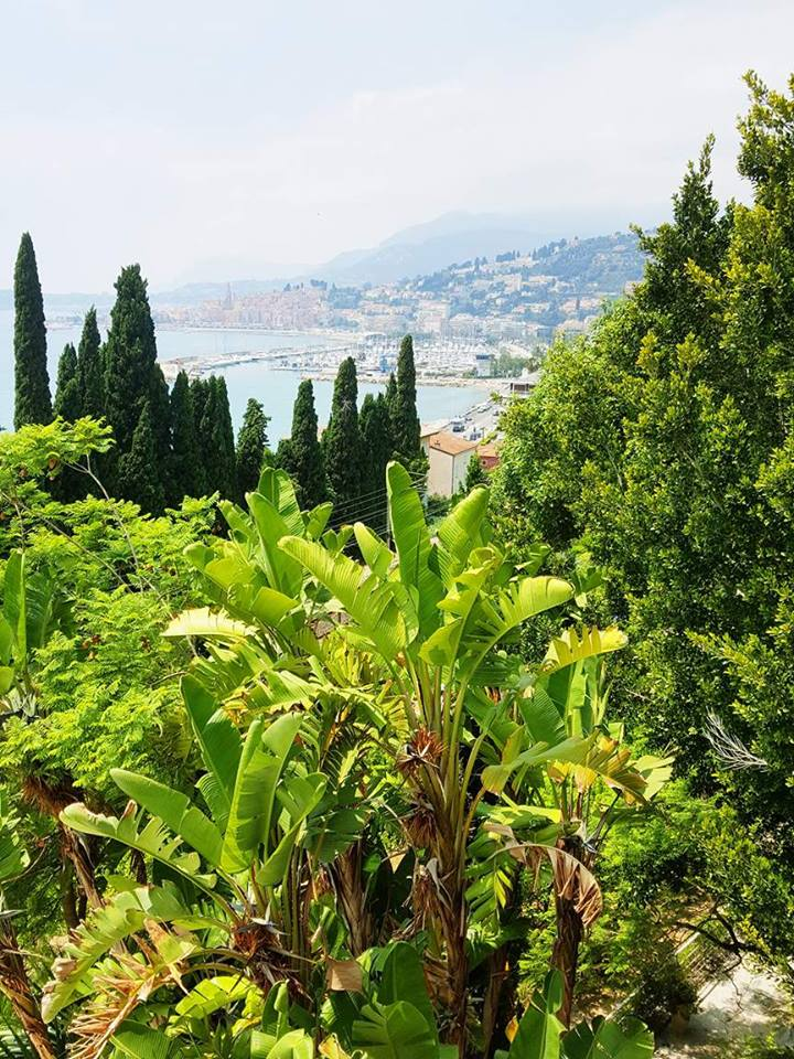 jardin-mauro